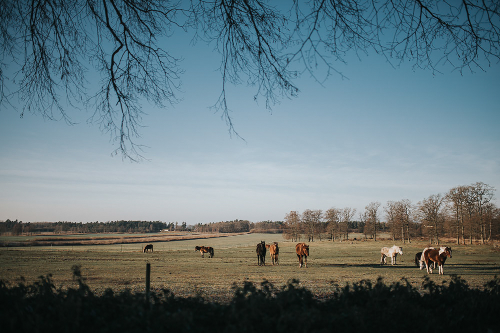 268-FotografWengdahl_Marie_Hakan_Brollopsfotograf_Oland
